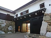 Kimg1501