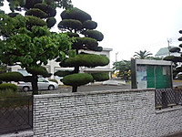 Pa0_0191