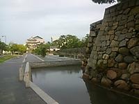 Kimg3317