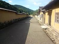 Kimg2931