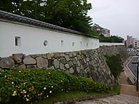 Kimg3546