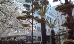 大阪家庭裁判所 対 松山家庭裁判所: 家庭弁護士の訟廷日誌
